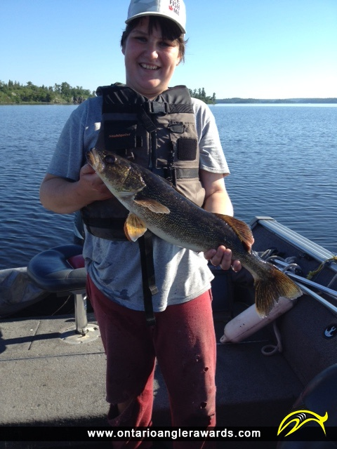 "26"" Walleye caught on Lake of the Woods"