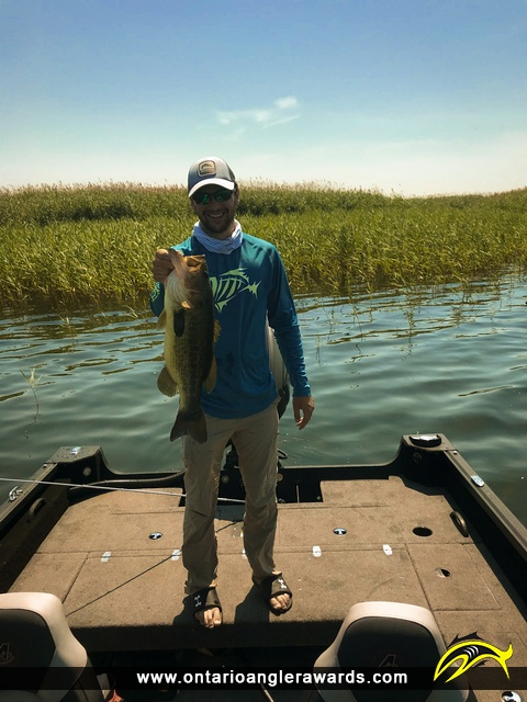 "21"" Largemouth Bass caught on Lake St. Clair"