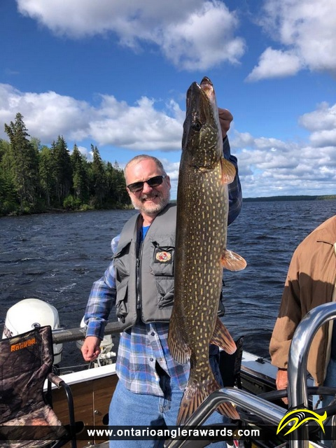 """39"""" Northern Pike caught on Red Lake"""