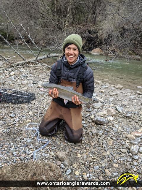 "29"" Rainbow Trout caught on Wilmot Creek"