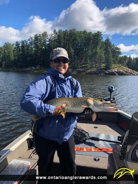 "33"" Northern Pike caught on Winnipeg River"