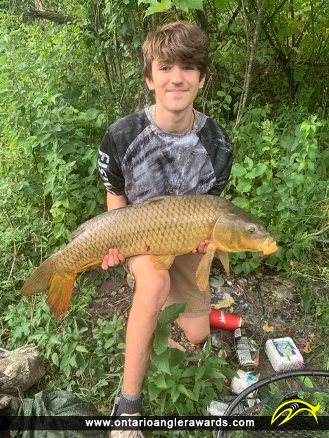 "35.75"" Carp caught on Welland Canal"