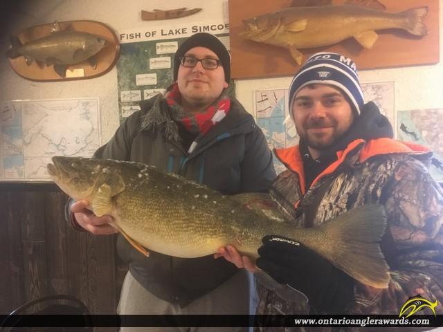 "34"" Walleye caught on Lake Simcoe"