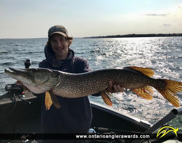 "34.75"" Northern Pike caught on Sturgeon Lake"