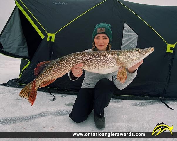 "40"" Northern Pike caught on Winnipeg River"