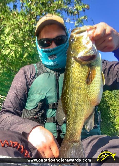 """18"""" Largemouth Bass caught on White Lake"""