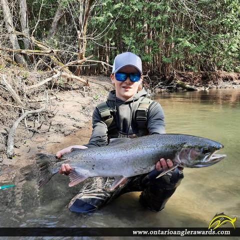 "32.25"" Rainbow Trout caught on Wilmot Creek"