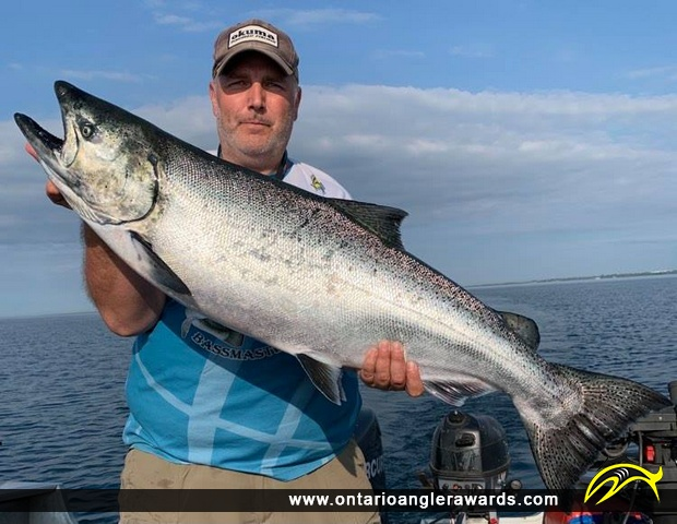 """39.5"""" Chinook Salmon caught on Lake Ontario"""