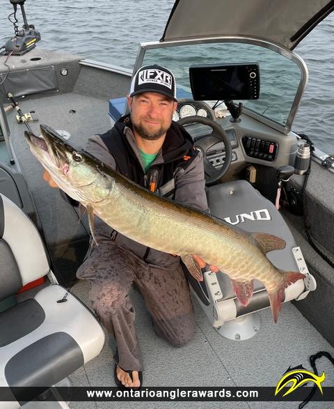 """36.5"""" Muskie caught on Little Sand Lake"""