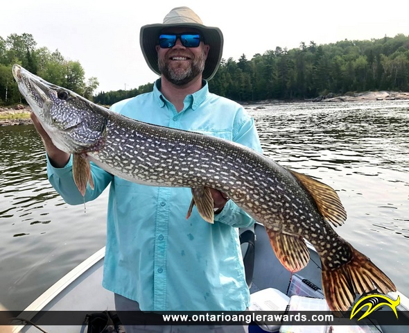 """41"""" Northern Pike caught on English River"""
