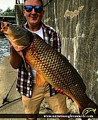 "37"" Carp caught on Scugog River"