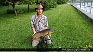 "31"" Carp caught on Otonabee River"