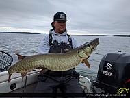 """44.25"""" Muskie caught on Lake Scugog"""