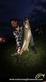 """40"""" Chinook Salmon caught on Picton Harbour"""