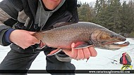 """18.75"""" Brook/Speckled Trout caught on Markoonis Lake"""