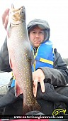 """18.03"""" Brook/Speckled Trout caught on Cedar Lake"""