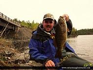 "19"" Smallmouth Bass caught on Rainy Lake"