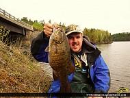 "19.5"" Smallmouth Bass caught on Rainy Lake"