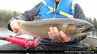 """21.00"""" Brook/Speckled Trout caught on Pine Lake"""