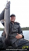 """37.00"""" Northern Pike caught on The South River"""