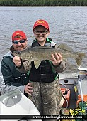 """26.5"""" Walleye caught on Lac Seul"""