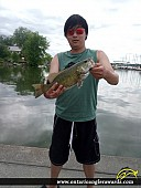 "17"" Smallmouth Bass caught on Lake Scugog"
