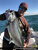 "37"" Chinook Salmon caught on Lake Ontario"