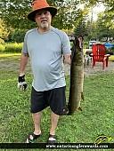 """36"""" Muskie caught on Nogies Creek"""