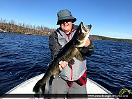 "28.5"" Walleye caught on Grayson Lake"