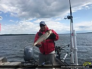 "22.75"" Whitefish caught on White Otter Lake"