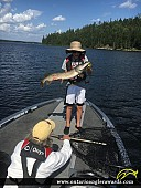"38.5"" Northern Pike caught on Lake of the Woods"
