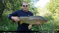 "31.00"" Carp caught on Cobourg Creek"
