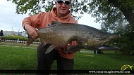 "38.00"" Chinook Salmon caught on Lake Ontario"