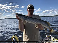"""31"""" Northern Pike caught on English River"""