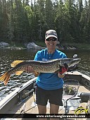 "34"" Northern Pike caught on Winnipeg River"