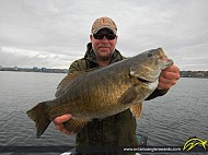 "22.5"" Smallmouth Bass caught on Lake Simcoe"