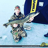 "42"" Northern Pike caught on Temperance Lake"