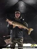 "30.1"" Walleye caught on Red Lake (Gullrock)"