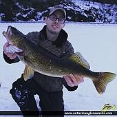 "32.5"" Walleye caught on Wolf Lake"