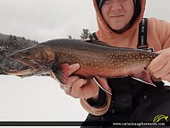 """20.00"""" Brook/Speckled Trout caught on Markoonis Lake"""