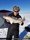 "26.5"" Walleye caught on Abitibi lake"
