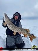 "47"" Northern Pike caught on Gull Rock Lake"