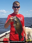 "18.5"" Smallmouth Bass caught on Lake of the Woods"