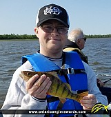 "16"" Yellow Perch caught on Lake of the Woods"