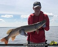 "37"" Northern Pike caught on Lake of the Woods"