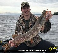 "34"" Northern Pike caught on Lake of the Woods"