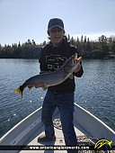 """29.5"""" Lake Trout caught on Clearwater Bay"""