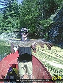 """37.5"""" Northern Pike caught on Iroquois Bay"""