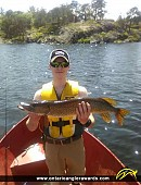 """33"""" Northern Pike caught on Iroquois Bay"""