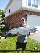 """36.5"""" Chinook Salmon caught on Lake Ontario"""